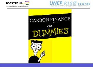 Glenn S. Hodes UNEP Ris  Center
