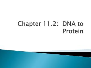 Chapter 11.2:  DNA to Protein