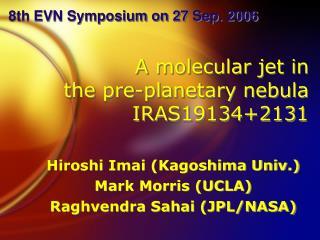A molecular jet in  the pre-planetary nebula  IRAS19134+2131