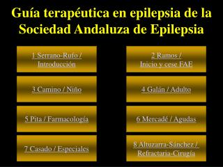 Guía terapéutica en epilepsia de la Sociedad Andaluza de Epilepsia