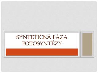 Syntetická fáza fotosyntézy