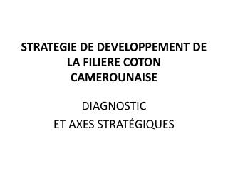 STRATEGIE DE DEVELOPPEMENT DE LA FILIERE COTON CAMEROUNAISE