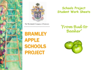 BRAMLEY  APPLE  SCHOOLS PROJECT