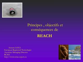 Principes , objectifs et conséquences de  REACH