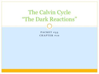"The Calvin Cycle ""The Dark Reactions"""