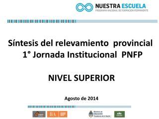 Síntesis del relevamiento  provincial   1° Jornada Institucional  PNFP NIVEL SUPERIOR