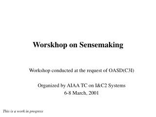 Worskhop on Sensemaking