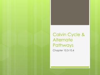 Calvin Cycle & Alternate Pathways