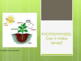 PHOTOSYNTHESIS: Can it make sense?