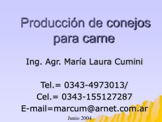 Producción de conejos para carne