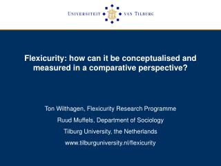 Flexicurity: how can it be conceptualised and measured in a comparative perspective?