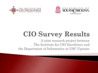 CIO Survey Results