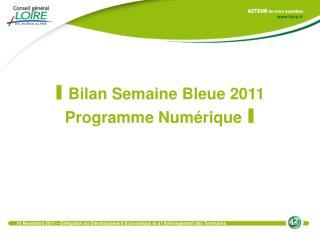 I Bilan Semaine Bleue 2011 Programme Numérique I