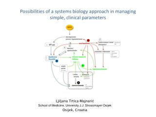 Possibilities of a systems biology approach in managing  simple, clinical parameters