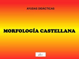 MORFOLOGÍA CASTELLANA
