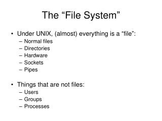 """The """"File System"""""""