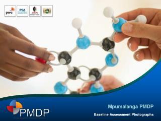 Mpumalanga PMDP