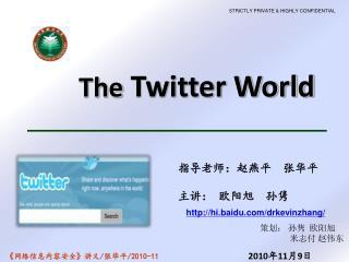 The  Twitter World