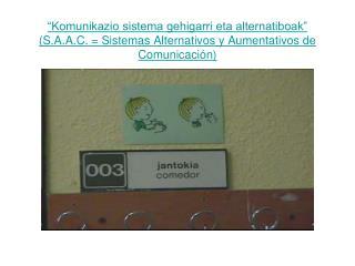 Komunikazio sistema alternatiboa: Zeinuen hizkuntza