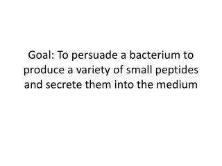 Standard  BioBrick plasmid backbone