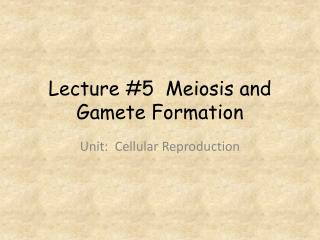 Lecture #5  Meiosis and Gamete Formation
