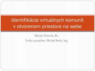 Identifikácia virtuálnych komunít votvorenom priestore na webe