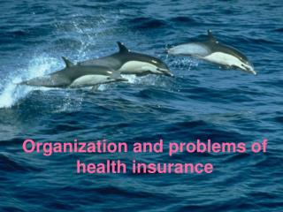 Organization and problems of health insurance