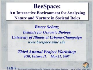 BeeSpace:  An Interactive Environment for Analyzing Nature and Nurture in Societal Roles