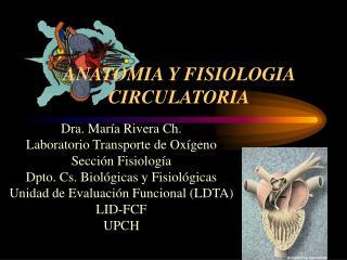 ANATOMIA Y FISIOLOGIA  CIRCULATORIA