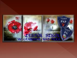 Naszaplacówka jest szkołą publiczną, organem prowadzącym  jest Gmina Grabów nad Pilicą,