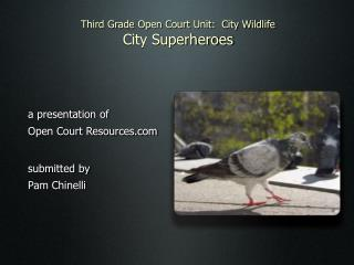 Third Grade Open Court Unit:  City Wildlife City Superheroes