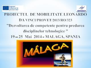 Programul mobilitatii