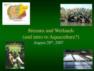 Streams and Wetlands  (and intro to Aquaculture?)