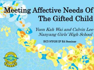 Meeting Affective Needs Of The Gifted Child