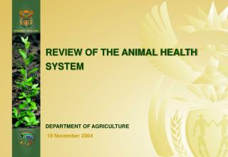 REVIEW OF THE ANIMAL HEALTH SYSTEM