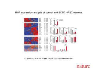 KJ Brennand  et al .  Nature 000 ,  1 - 5  (2011) doi:10.1038/nature09915