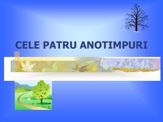 CELE PATRU ANOTIMPURI