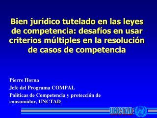 Pierre Horna Jefe del Programa COMPAL Políticas de Competencia y protección de consumidor,  UNCTAD