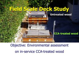 Field Scale Deck Study