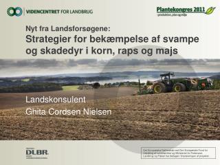 Nyt fra Landsforsøgene: Strategier for bekæmpelse af svampe og skadedyr i korn, raps og majs