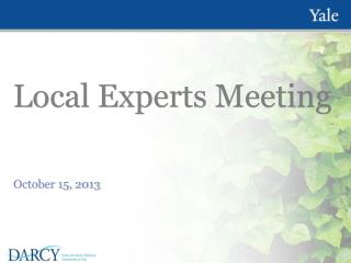 Local Experts Meeting
