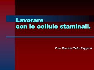 Prof. Maurizio Pietro Faggioni