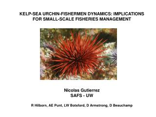 KELP-SEA URCHIN-FISHERMEN DYNAMICS: IMPLICATIONS FOR SMALL-SCALE FISHERIES MANAGEMENT