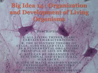 Big Idea 14 : Organization and Development of Living Organisms