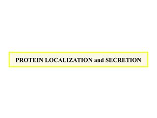 PROTEIN LOCALIZATION and SECRETION