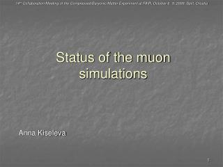 Status of the muon simulations