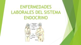 ENFERMEDADES LABORALES DEL SISTEMA ENDOCRINO