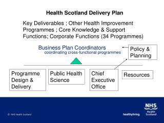 Business Plan Coordinators  coordinating cross-functional programmes