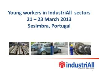 Young workers in IndustriAll  sectors 21 – 23 March 2013  Sesimbra, Portugal
