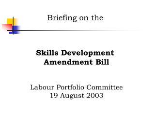 Briefing on the  Skills Development  Amendment Bill Labour Portfolio Committee 19 August 2003